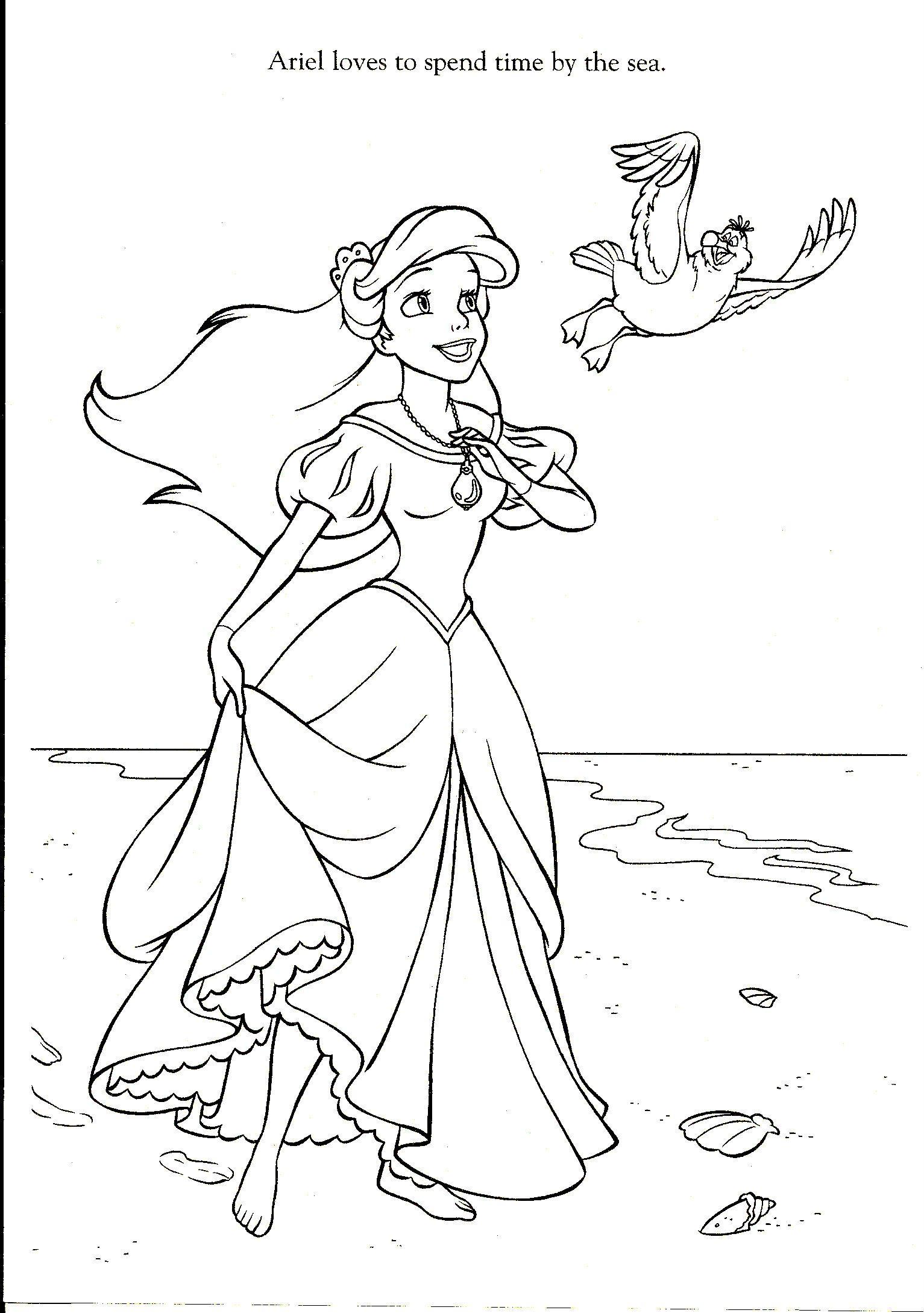 Ausmalbilder Mako Einfach Meerjungfrau : Nach Oben Ausmalbilder Meerjungfrau Arielle