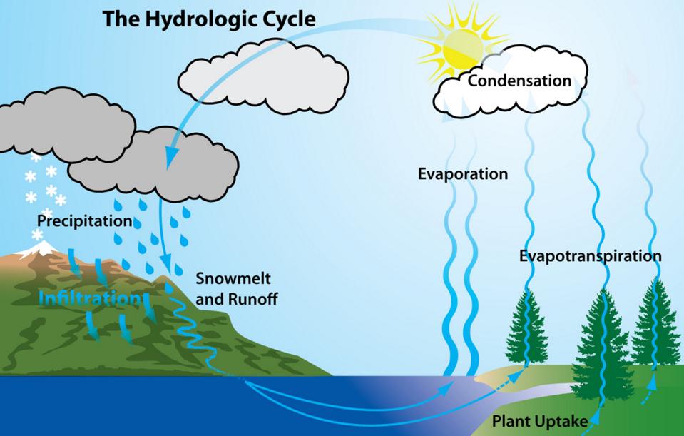 Pengertian  Macam - Macam Dan Proses Terjadinya Siklus Hidrologi     Dosenpendidikan