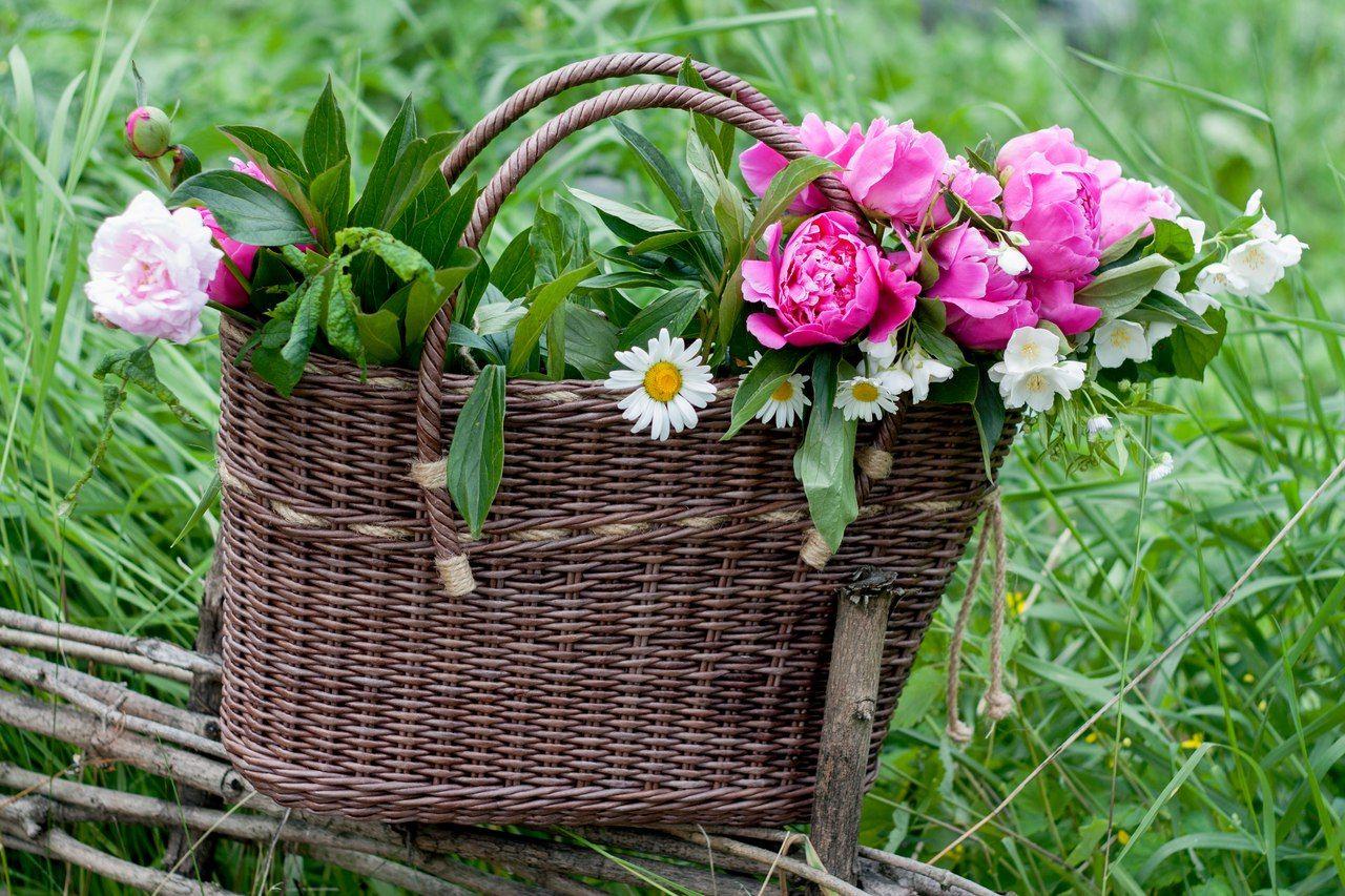 картинки плетеных корзин с цветами технологические