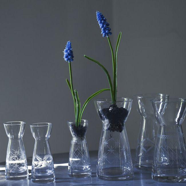 Rowen & Wren - Etched Bess Bulb Vases