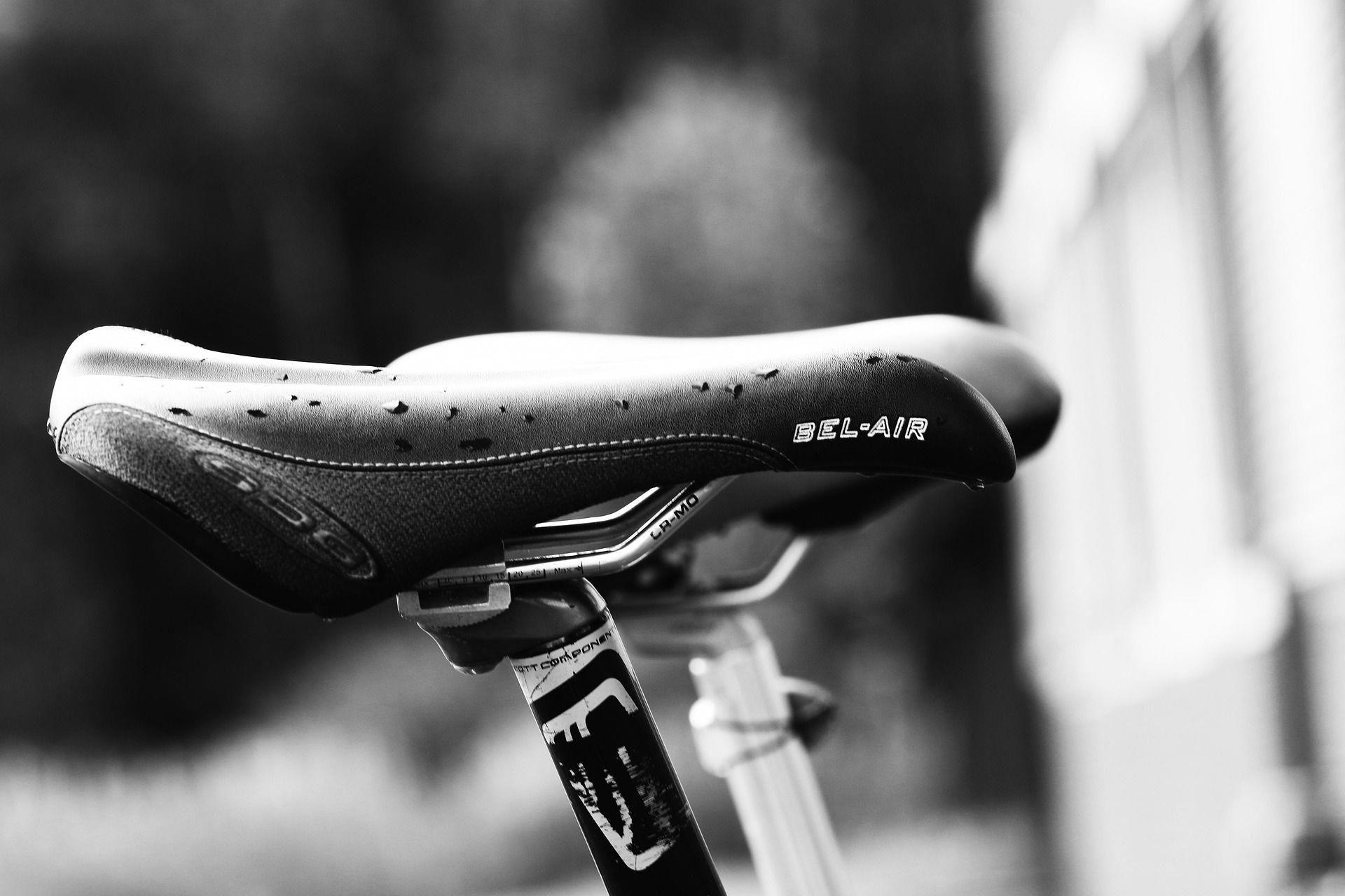 Types Of Bikes Bike Reviews Trek Bikes Bike Seat