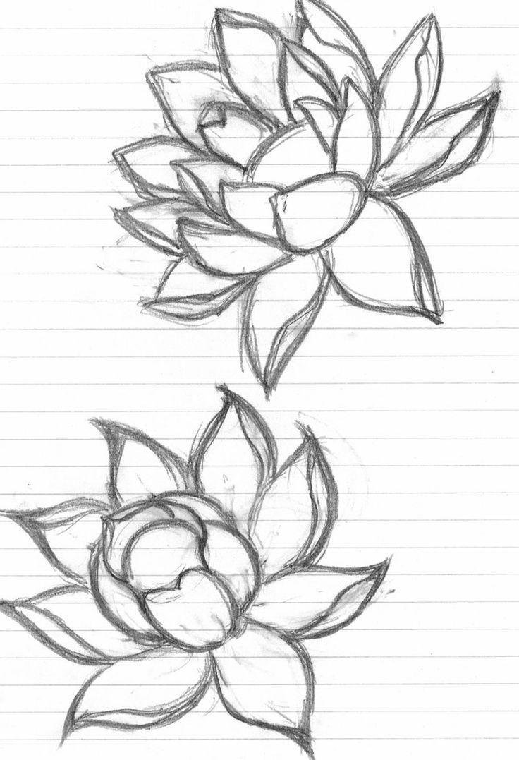 Lotus Flower Sketches Lotus Flower Sketch Flowers Ideas