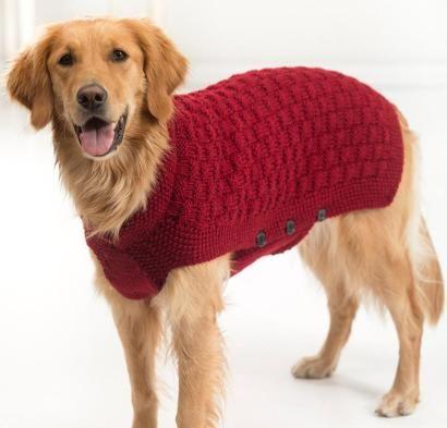 Clifford Dog Sweater Kit