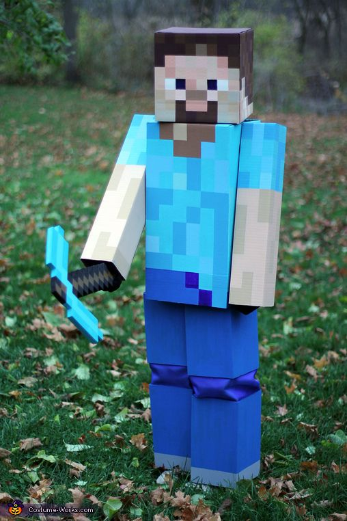 Diamond Armour Steve Minecraft Pictures Painting Minecraft Minecraft Costumes