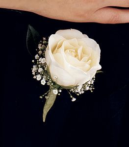 White Garden Rose Boutonniere white rose with babys breath for grooms boutineer | wedding