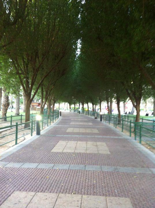 Salam Park سلام الرياض منطقة الرياض Park Riyadh Saudi Arabia Islamic Countries