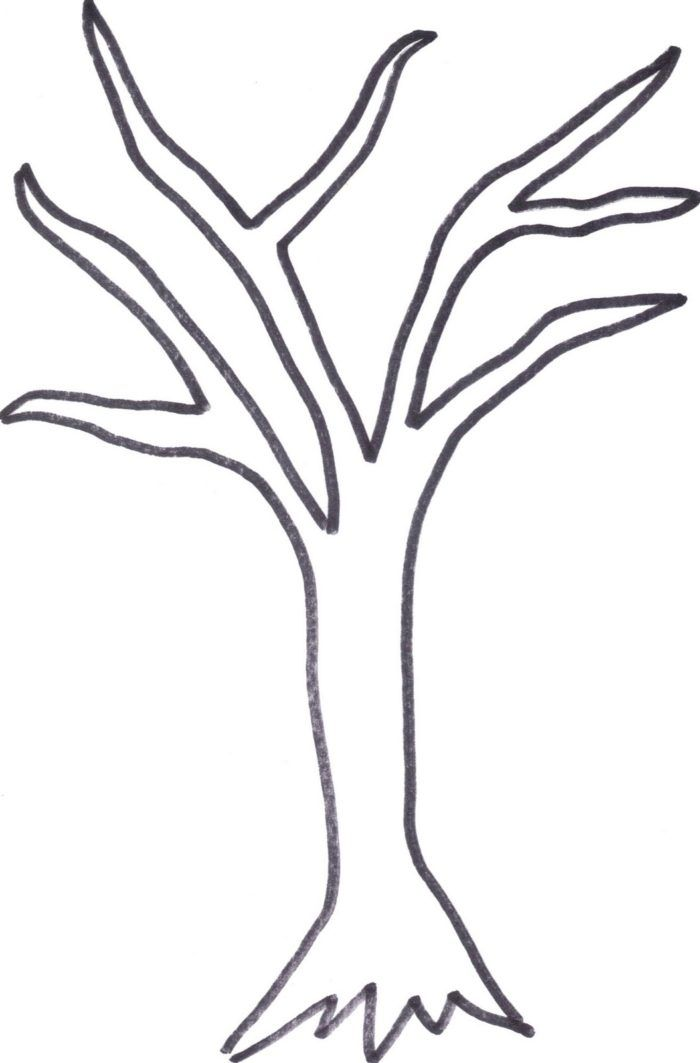 Easy bare tree coloring page bare tree template printable   coloring pages for kids and for adults