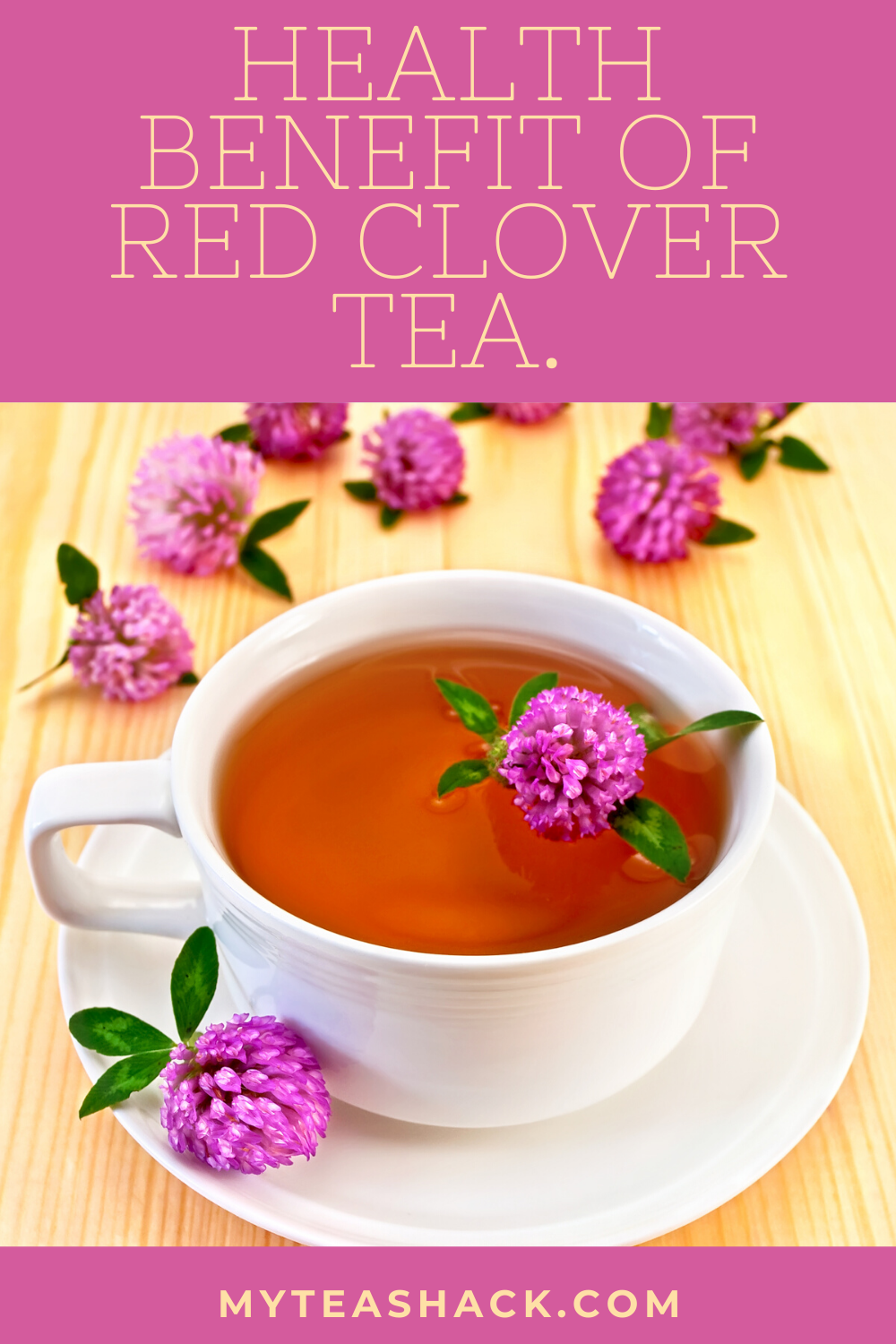 Health Benefits Of Red Clover Tea Updated In 2020 Red