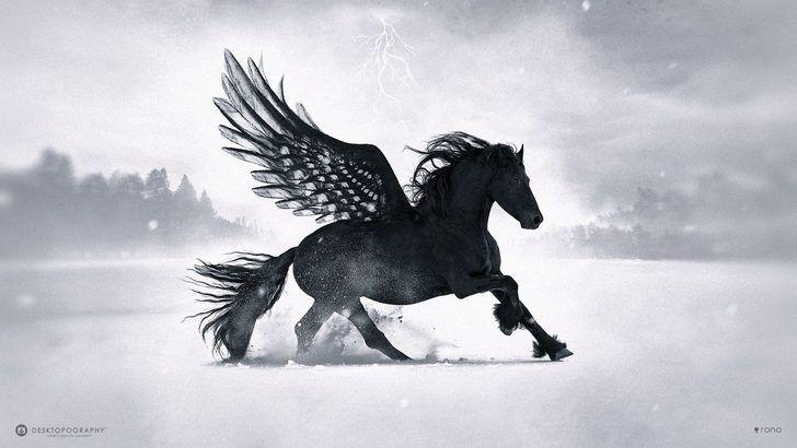 Black Pegasus [1920×1080] 4K