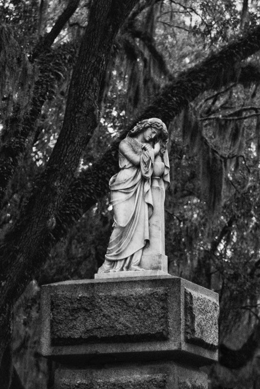 Gate To Savannah S Bonaventure Cemetery Img 7681