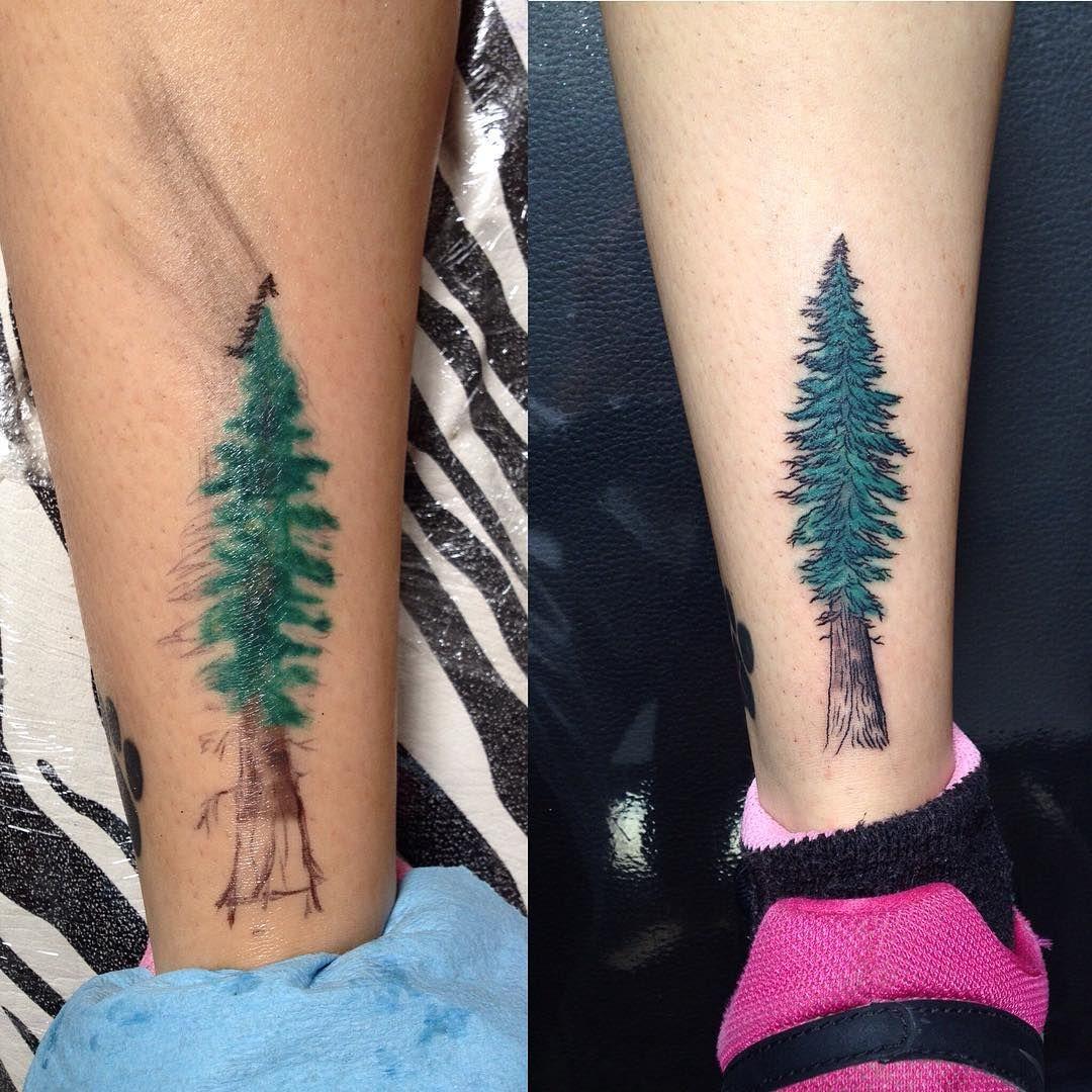 nice Top 100 Tattoo Tree | Un arreglito #elkubotattoo #elkubo #elkubocentro #tattoo #tree #tattootree #littletattoo #lidiadepablo #lidiadepablotattoo