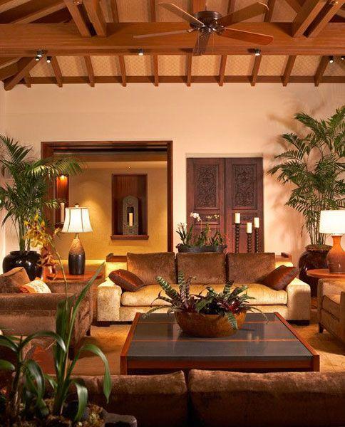 Las plantas no pueden faltar en casa porque ellas aportan la energía de las que carecen ciertas esquinas mal decoradas y a las que no se presta atención.
