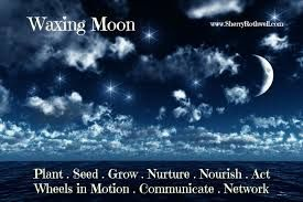 Image result for waxing crescent moon fine art