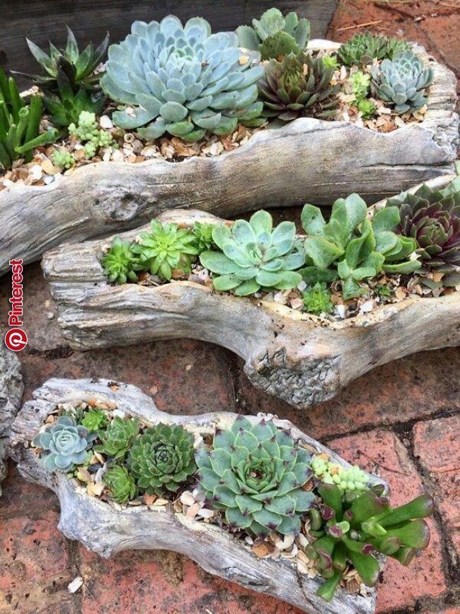 26 Ideale Saftige Gartenkonzepte Rund Um Den Globus Garten Deko Bepflanzung Garten Deko Ideen