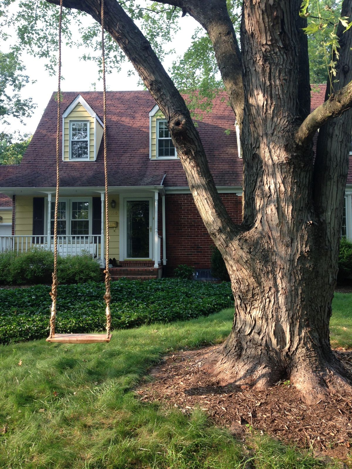 how to hang a swing from a tree trunk