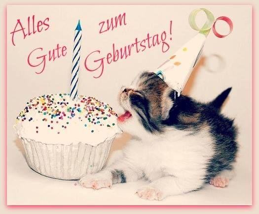 Einem Kätzchen Essen Kuchen Alles Gute Zum Geburtstag