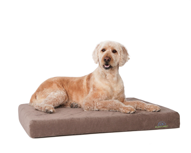 Orthopedic Dog Beds Buddyrest Deluxe Orthopedic Memory Foam Dog Bed Dog Pet Beds Orthopedic Pet Bed Memory Foam Dog Bed