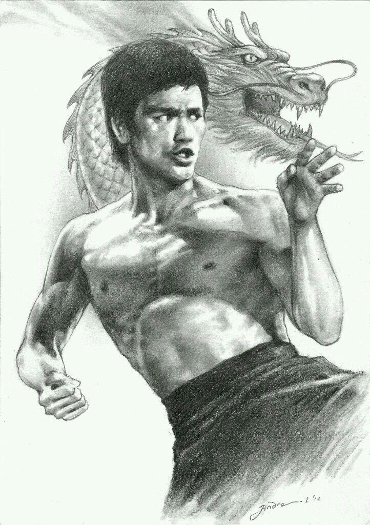 Pin De Lord Dread Em Bruce Lee Artes Marciais Fotos Engracadas De Macacos Bruce Lee