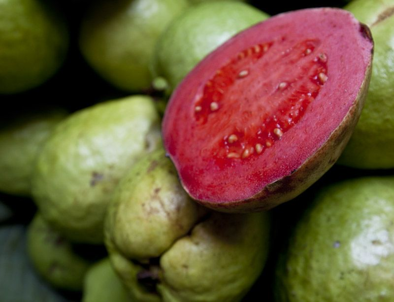 Filipino native guava food drinks pinterest filipino food filipino native guava forumfinder Image collections