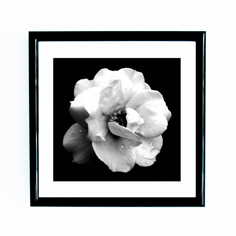 Etsy Shop Black And Whitephotography Printswall Artsquare Prints