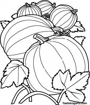 Printable Vegetables Pumpkins Coloring Pages Printable Coloring
