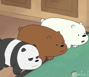 خلفيات الدببه الثلاثة 2020 افضل رمزيات وصور كرتونية جميلة وكيوت للأطفال والكبار Cute Character Art