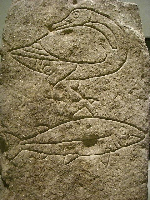 Pictish carvings scotland salmon and picts