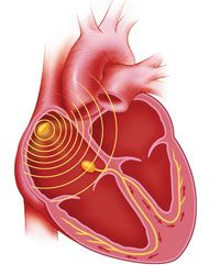 Illustration of hearts electrical system ecgekg pinterest illustration of hearts electrical system ccuart Choice Image