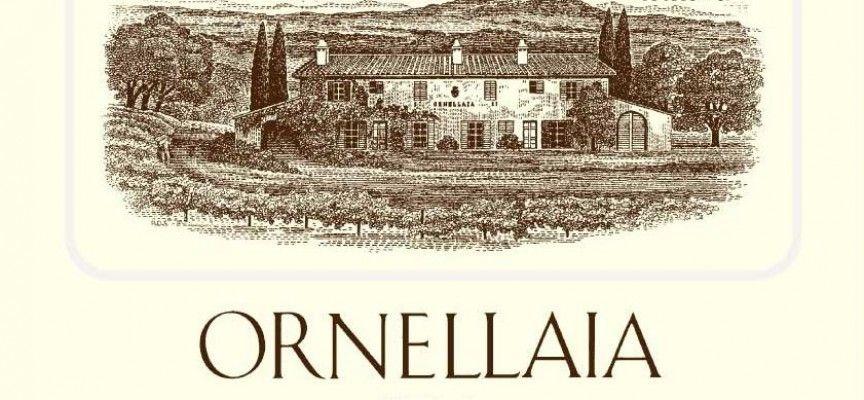 La filosofia di produzione dell'azienda produttrice di vino Ornellaia si focalizza su un solo obiettivo: la qualità. http://magazine.ilchiccoduva.eu/vino-ornellaia/ #Vino #Ornellaia #venditavino #negoziovino #vinoornellaiaprezzo