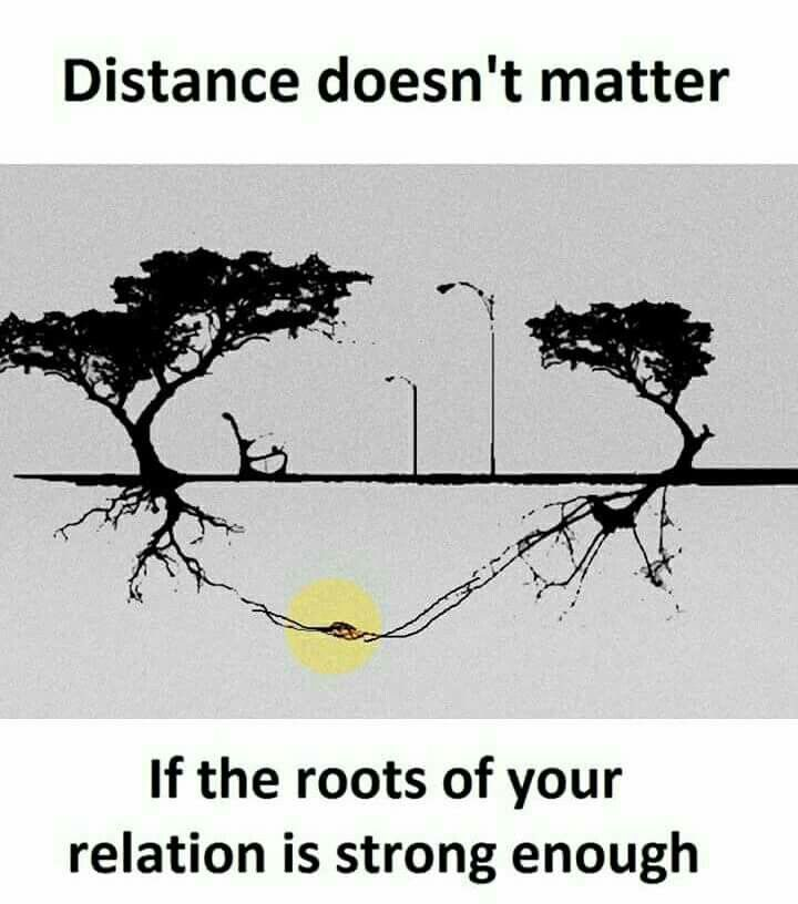 Distance Doesn T Matter If The Roots Of Your Relation Is Strong Enough Picture Quotes True Love Quotes Friends Quotes