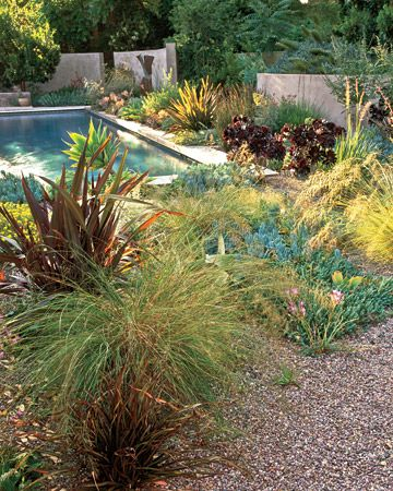Soften a pools edge with plants -this is a good layout for a small space