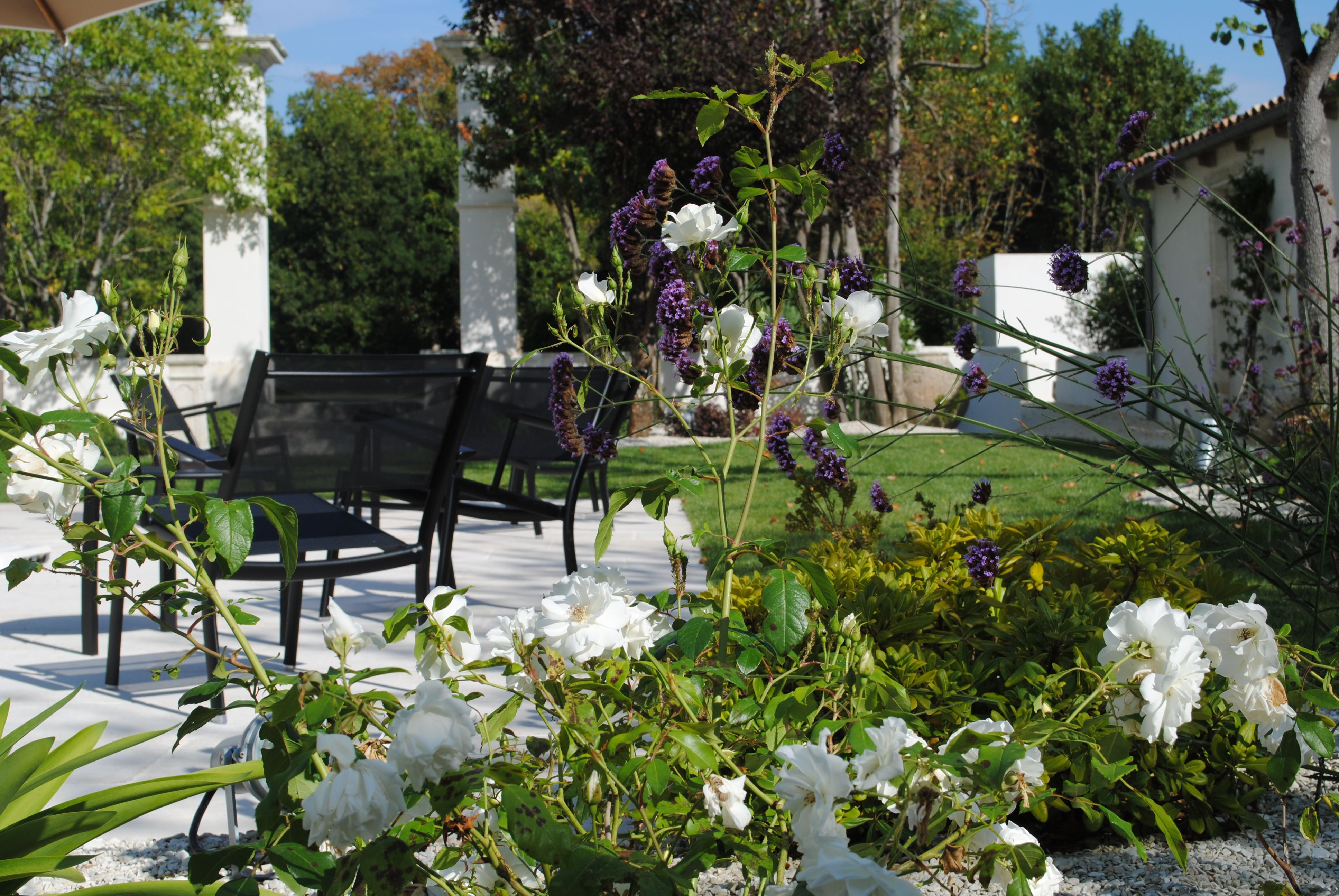Le clos SaintMartin Hotel ile de ré, Photo jardin