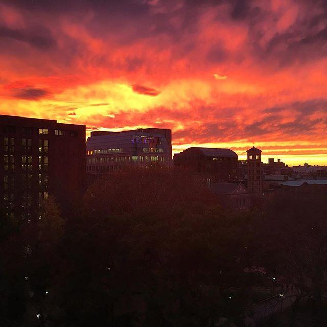 http://washingtonsquareparkerz.com/redsky-sunset-washingtonsquarepark-newyorkcity-light-magic/ | #redsky #sunset #washingtonsquarepark #newyorkcity #light #magic