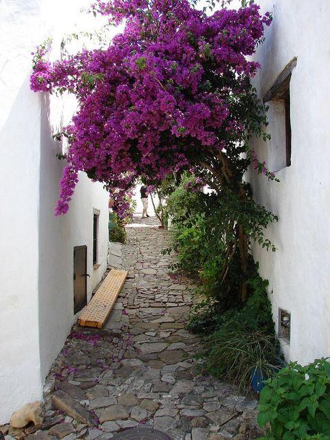 Narrow street of Castellar de la Frontera in southern Spain