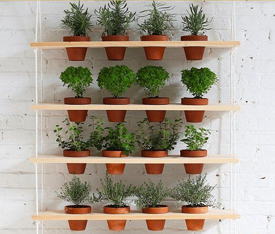 16 indoor plant wall projects that anyone can do on indoor herb garden diy wall vertical planter id=16433