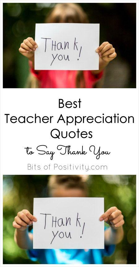 Appreciation Quotes For Teachers Entrancing Best Teacher Appreciation Quotes To Say Thank You  Teacher . Decorating Design