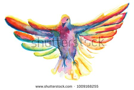 The Watercolor Illustration Of Multicolor Pigeon Symbol Of The Holy
