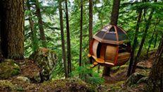 Beautiful Fairy Tale Tree Houses