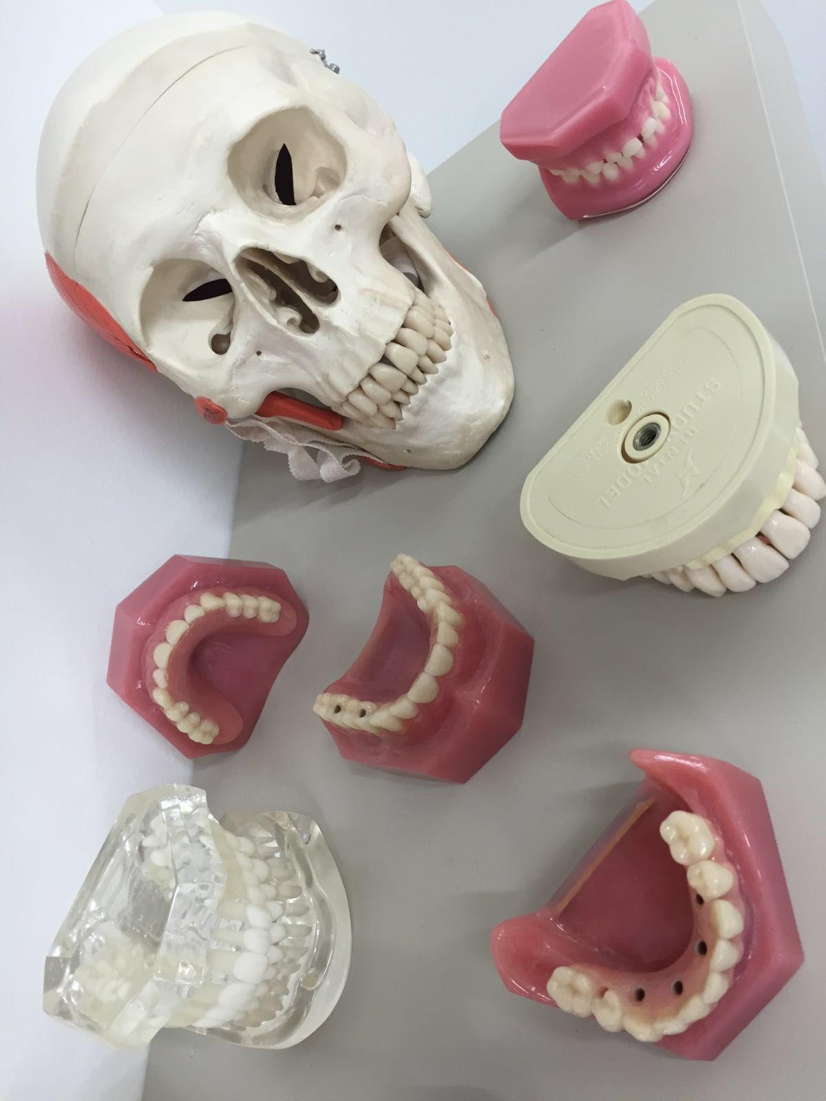 La cosa va de #dientes ¿NO?