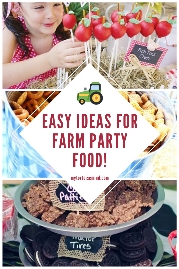 Here's 13 fun and easy farm party foods for a children's farm birthday party. #childrenpartyfoods