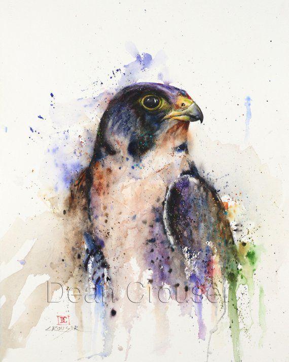 Peregrine Falcon Aquarell Druck Von Dean Crouser Vogel Kunst