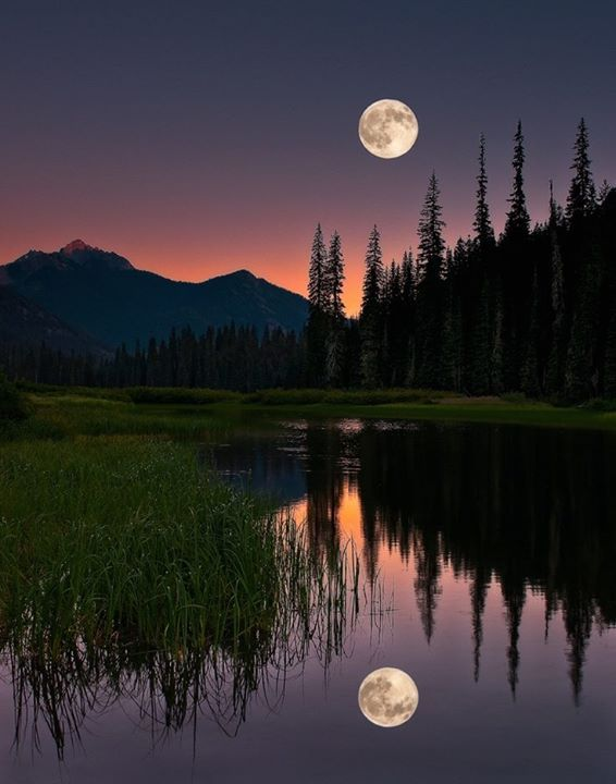 Landscape Scenery Nature Travel Lake Mountain Night Moon Trees Reflection Nature Photography Beautiful Moon Nature Photos