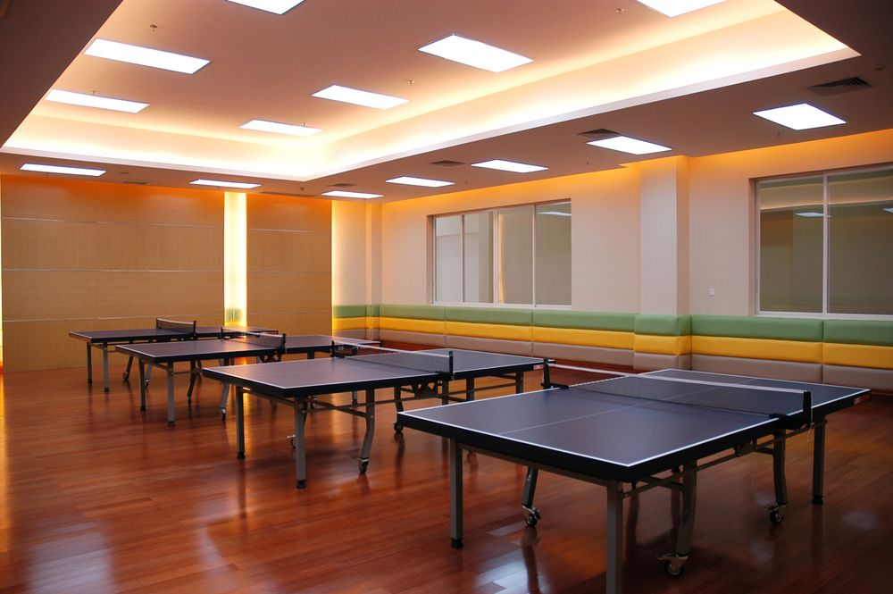 The table tennis field.
