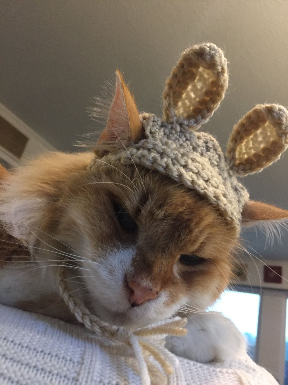 by TheBloomingPot on Etsy Cat hat, Bunny hat, Cats