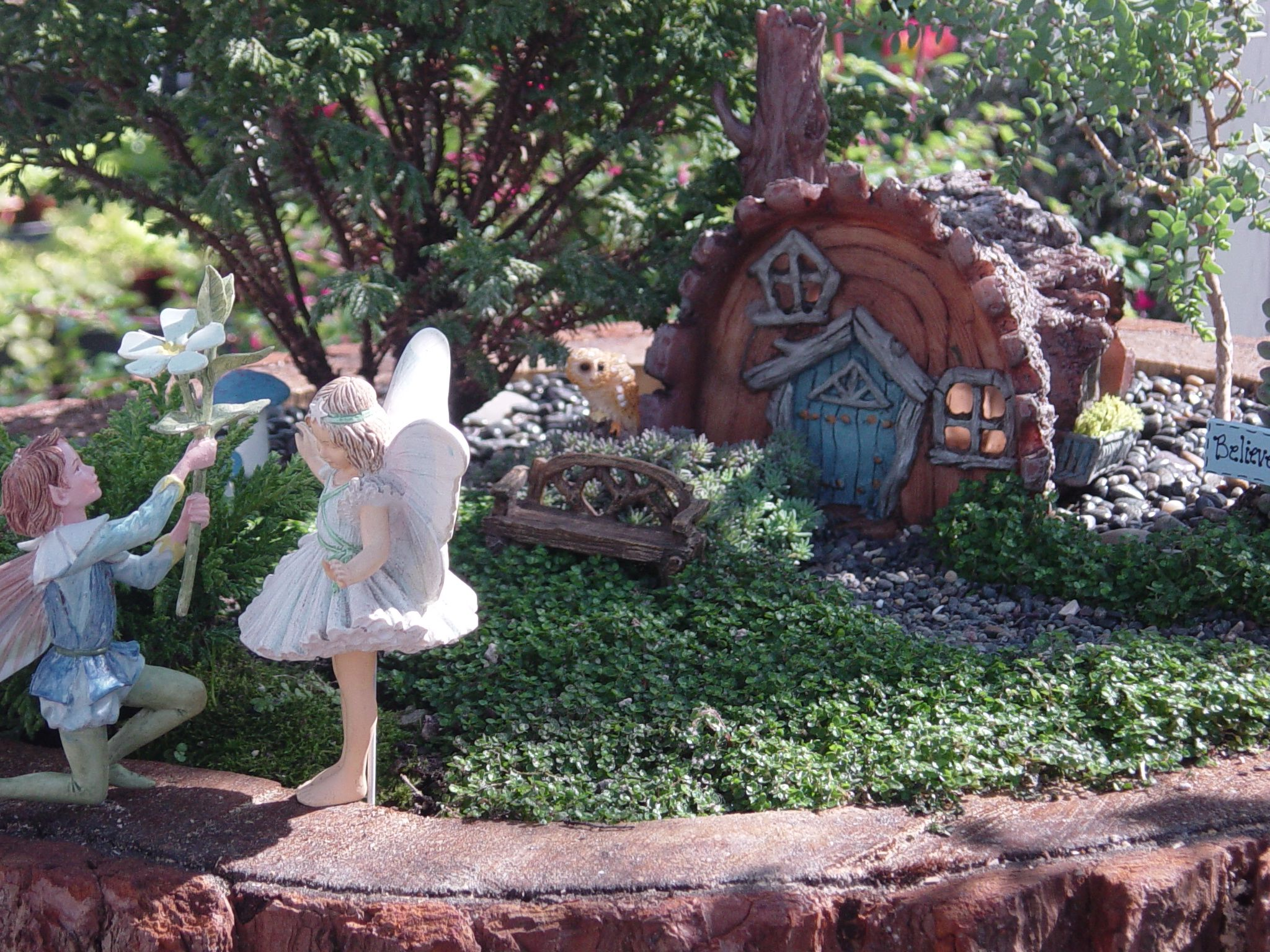 Stumps And Trunks Pine Stump Planter Turned Into A Fairy Garden By M