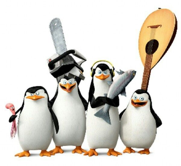penguins of madagascar animated movies �� pinterest