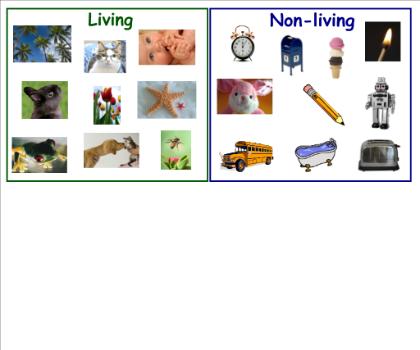living vs non living cultural botany 1st grade worksheets classroom sorting activities. Black Bedroom Furniture Sets. Home Design Ideas