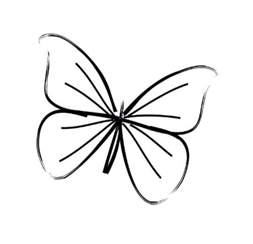 Butterfly Butterfly Line Drawing Easy Butterfly Drawing Butterfly Tattoo