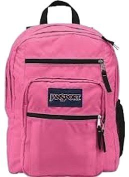 92f1591f7bf9 JanSport Big Student Laptop Pink Pansy Hiking Camping Carry On Travel  Backpack