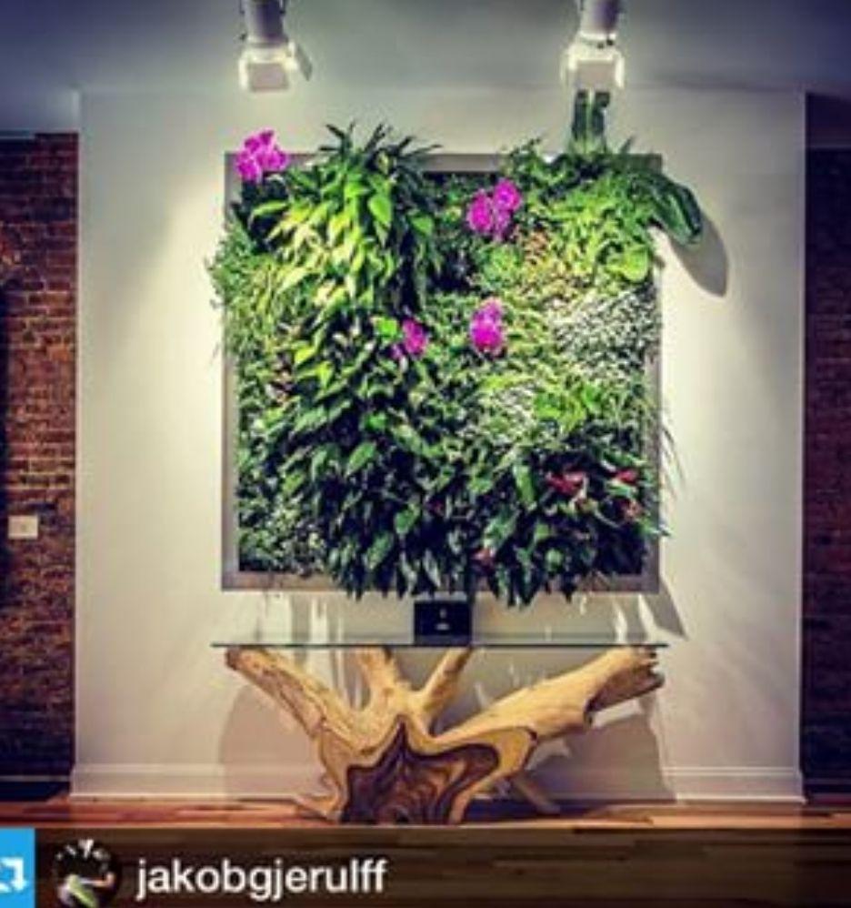 Urban wall gardening - Home Garden Wall Units And The Fogponics Ultraponics Home Indoor Urban Gardening Experience Ultrasonic